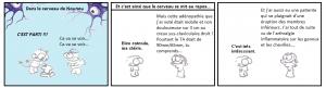 Nounou_Cerveau4